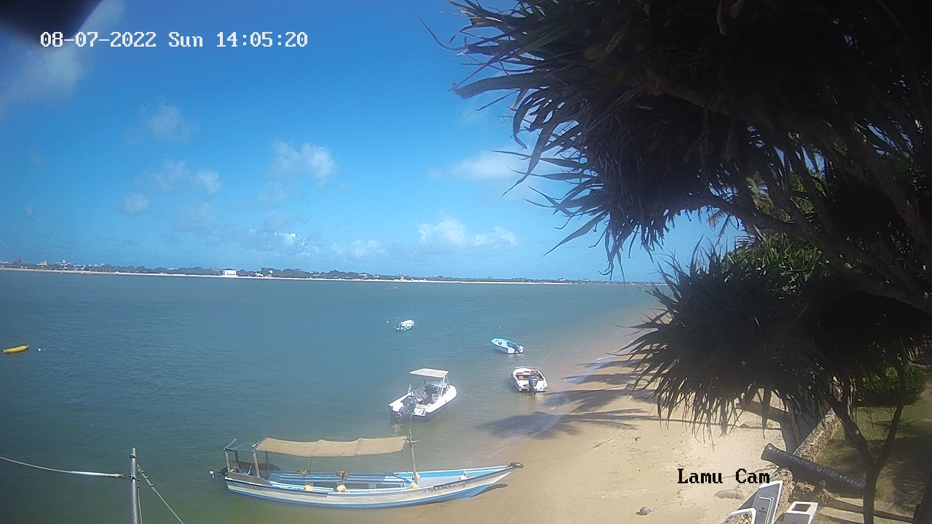 Lamu webcam - Lamu Island webcam, Coast Province, Lamu District